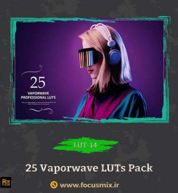 vaporwave LUTs Pack LUT-14